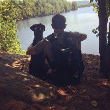 Adirondack Dog