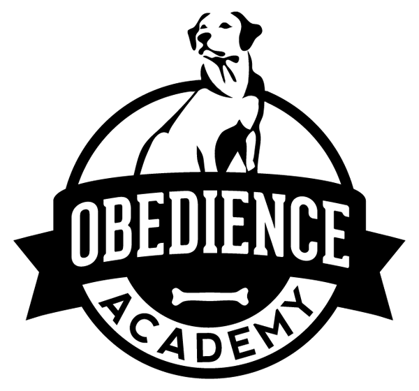 Obedience Academy